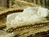 FT-NIR Analysis of Cereals and Flour